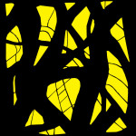 Black & Yellow #1