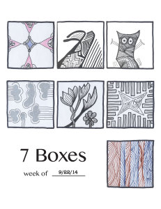 7 Boxes #43